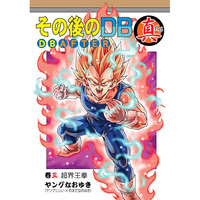 Doujinshi - Dragon Ball / Vegeta & Goku (その後のDB真3巻) / Studio tomorrow