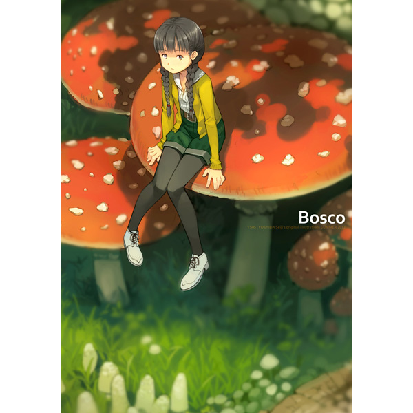 Doujinshi - Illustration book - Bosco / TNK