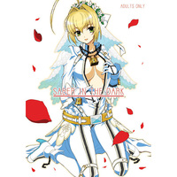 [Adult] Doujinshi - Fate/EXTRA / Kishinami Hakuno & Saber (SABER IN THE DARK) / ヘタレアーツ