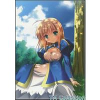 Doujinshi - Fate/stay night / Saber (TM Collection) / KOJI2