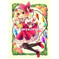 Doujinshi - Illustration book - Touhou Project / Flandre Scarlet (FLOWER:SPRING) / コウセイ