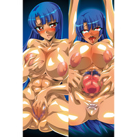 Dakimakura Cover - Taimanin Series
