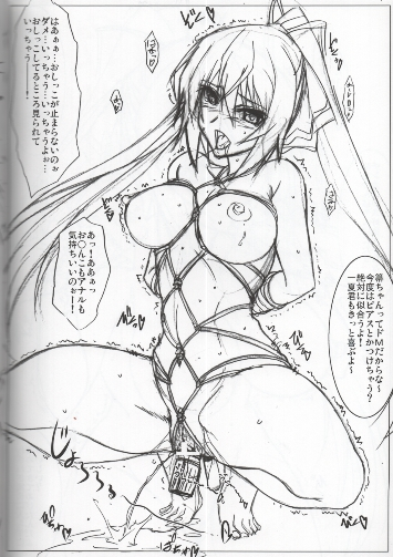 [Adult] Doujinshi - Infinite Stratos (AstralBout Ver.21.5) / STUDIO TRIUMPH