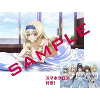 Glasses Cleaner - Infinite Stratos