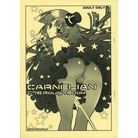 [Adult] Doujinshi - Illustration book - 【コピー誌】CARNELIAN C76 Rough Book / CARNELIAN