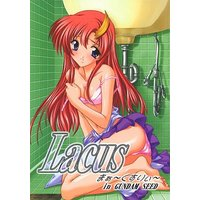 [Adult] Doujinshi - Mobile Suit Gundam SEED / Lacus Clyne (Lacus まぁ~くすりぃ~) / Studio Q