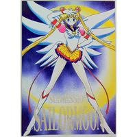 [Adult] Doujinshi - Sailor Moon / Tsukino Usagi (SUBMISSION SAILORMOON) / BLACK DOG