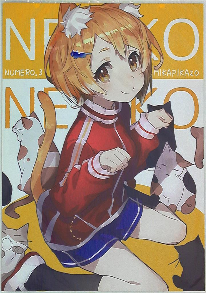 Doujinshi - Illustration book - NUMERO.3 / Mika Pikazo