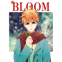 Doujinshi - Illustration book - Bleach / Ichigo Kurosaki & Kuchiki Rukia & Nelliel Tu Odelschwanck & All Characters (BLOOM) / Cherish