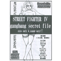 [Adult] Doujinshi - Street Fighter (【コピー誌】STREET FIGHETR IV gangbang secret file eyes only & sound only!!) / POWER PLAY
