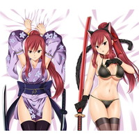 Cushion - Fairy Tail / Erza Scarlet