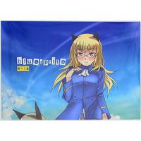 [Hentai] Doujinshi - Strike Witches (bluesprite) / real