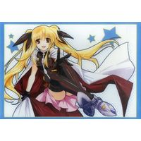 Case - Magical Girl Lyrical Nanoha / Fate Testarossa
